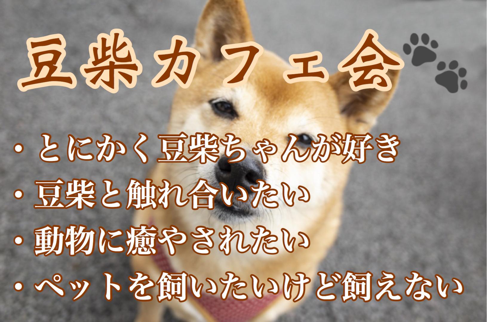 福岡交流イベント
