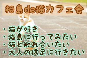 相島de猫カフェ会